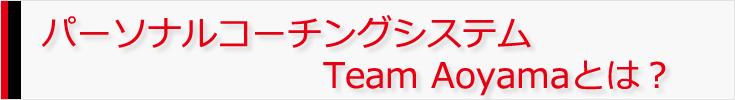 パーソナルコーチングシステムTeam Aoyamaとは?